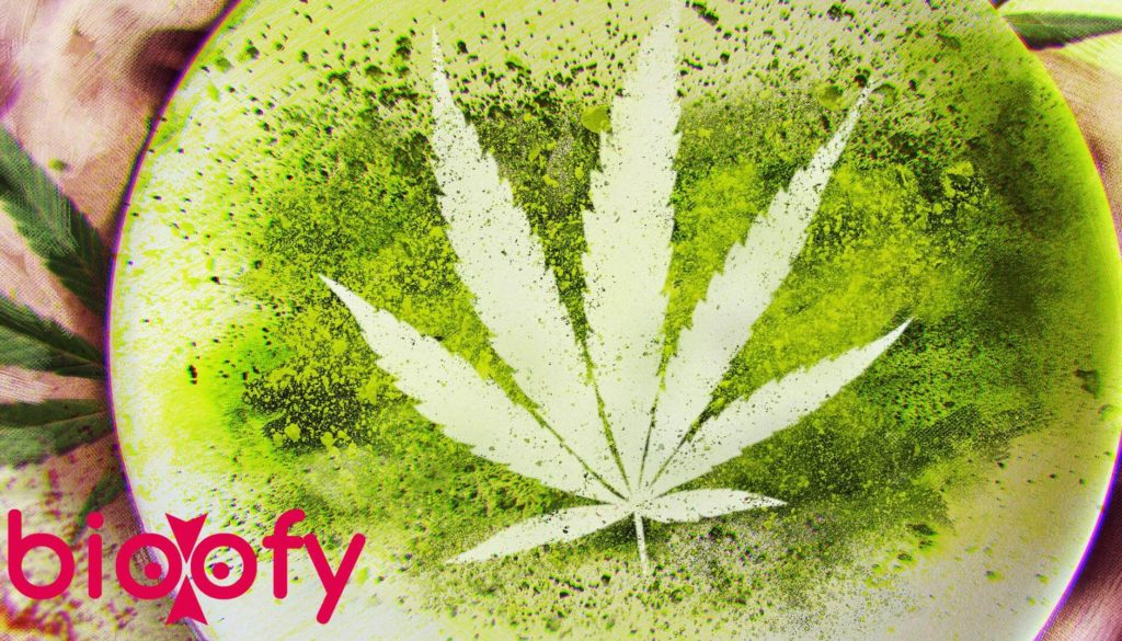 Cooked With Cannabis Cast, Cooked With Cannabis (Netflix) Cast & Crew, Roles, Release Date, Story, Trailer