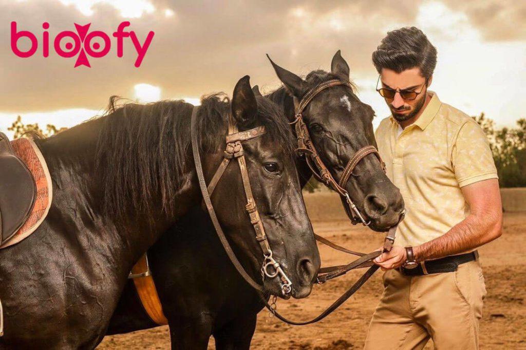 Nabeel Zuberi Horse 1024x682