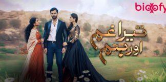 Tera Gham Aur Hum (HUM TV)